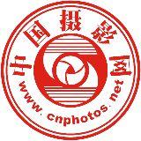 中国摄影网
