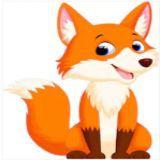 狐狸先森几点钟