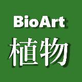 BioArt植物