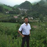 中国当归村新农哥