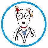 兽医小明视频
